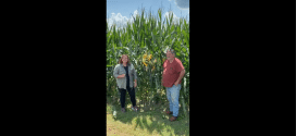 Dexter Jones Discusses His BigYield Corn Program