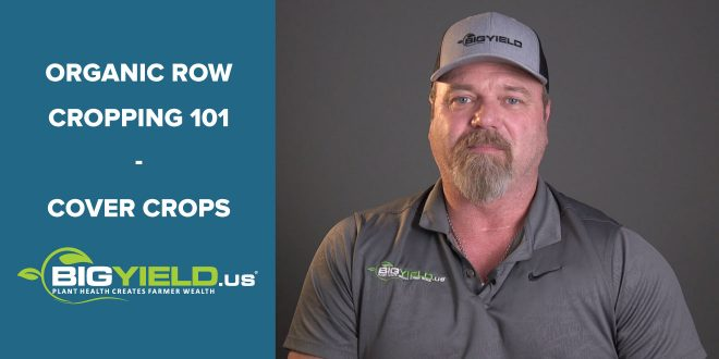 Cover Crops Organic Row Cropping 101