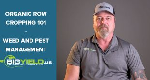 Weed and Pest Management | Organic Row Cropping 101