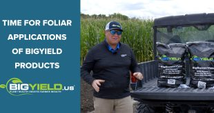 Time for Foliar Applications of BigYield Products
