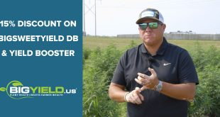15 Percent Discount on BigSweetYield DB and Yield Booster