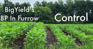 BP In-Furrow Soybean Comparison Featured